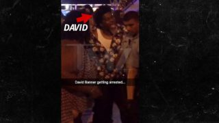 """David Banner Arrested in Washington D.C.: """"I Don't Give a F**k About Police"""""""